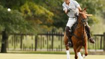 Polo Lessons from Buenos Aires, Buenos Aires, Day Trips