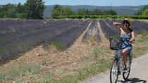 Luberon Electric Bike Rental from Bonnieux, Provence, Bike & Mountain Bike Tours