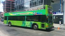 New York City 3-Day Hop-On Hop-Off Bus Pass, New York City, Hop-on Hop-off Tours