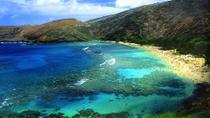 Hanauma Bay Guided Snorkel Tour with Underwater Photos, Oahu, Scuba & Snorkelling