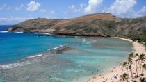 Hanauma Bay Guided Snorkel Tour with Underwater Photos, Oahu, Snorkeling