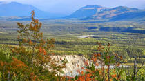 Denali National Park Walking Tour, Denali National Park, Hiking & Camping