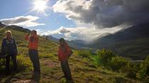 Denali Wilderness Hiking Tour, Denali National Park, Hiking & Camping