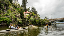 Guided Canoe Tour on Launceston's Tamar River, Launceston