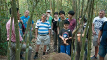 Half-Day Afternoon Cu Chi Tunnels Tour, Ho Chi Minh City