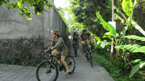 Light Off Road Mountain Bike Village Tour , Bali, Bike & Mountain Bike Tours