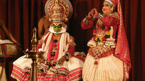 7-Night Kerala Tour to Kochi, Munnar, Periyar, Allepey and Kovalam, Kochi, Full-day Tours