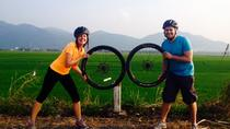 4-Day Vietnam Bike Tour Including Cat Tien National Park, Dalat and Nha Trang, Ho Chi Minh City, ...
