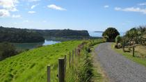 Matakana Coastal Getaway from Auckland, Auckland, Wine Tasting & Winery Tours