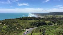 Muriwai Scenic Wine Tour, Auckland, Wine Tasting & Winery Tours