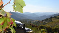 Douro 4x4 Offtrack Adventure from Porto, Porto, Day Trips