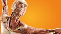Body Worlds: Pulse the Exhibition at Discovery Times Square, New York City, Concerts & Special ...