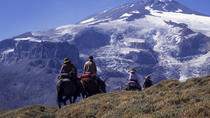7-Day Andes Crossing from Mendoza to Chile by Horse, Mendoza, Bike & Mountain Bike Tours