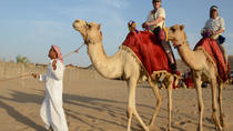 Morning Camel Trekking Safari from Dubai , Dubai, Safaris