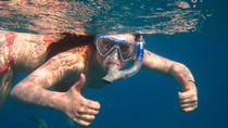 Snorkeling at Palmilla Bay from San Jose del Cabo, Los Cabos, Sunset Cruises