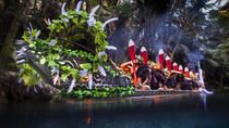Spirit Mountain Combo Tour with Maori Hangi Feast in Rotorua, Rotorua, Cultural Tours
