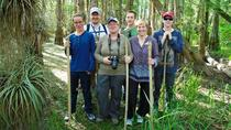 Everglades Walking Tour, Everglades National Park