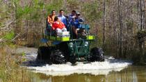 Private Buggy and Walking Tour Through the Everglades, Everglades National Park, Private ...