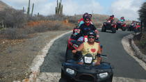 Aruba Shore Excursion: ATV Island Sightseeing Adventure, Aruba