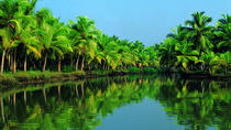 Group Shore Excursion: Backwater Houseboat Tour and Fort Kochi from Cochin Port , Kochi, Ports of ...