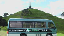3-Hour Auckland Express Tour , Auckland, City Tours