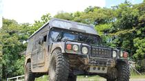Half-Day Rainforest Hummer Day Trip from Cairns, Cairns & the Tropical North, 4WD, ATV & ...