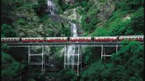 Kuranda Village Day Trip from Cairns With Optional Scenic Railway and Skyrail, Cairns & the ...