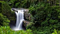 Private Tour: Best of Bali, Bali, Private Sightseeing Tours