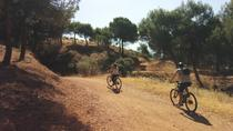 Alhambra Countryside Electric Bicycle Tour in Granada, Granada, Bike & Mountain Bike Tours