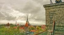 Walking Tour of Tallinn Old Town and Kalamaja, Tallinn, Walking Tours