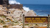 Cape Peninsula Photography Day Tour including Lunch, Cape Town, Cultural Tours