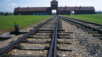 Auschwitz-Birkenau Museum Private Tour from Krakow, Krakow, Private Tours