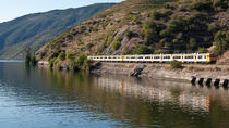 Day Trip from Porto to Régua by Train and Return by Boat, Porto