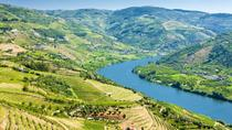 Full-Day Tour in Douro with Lunch, Porto