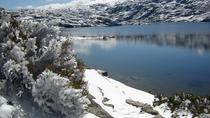 Serra da Estrela - Full Day Tour , Porto, Full-day Tours