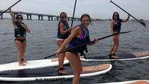 New York City Stand-Up Paddleboard Experience, New York City, Kayaking & Canoeing