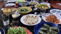Private Authentic Japanese Cooking Lesson and Meal in a Kyoto Home, Kyoto, Cooking Classes