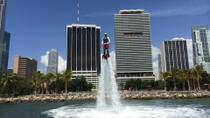 Bayside Flyboard Experience, Miami, Other Water Sports