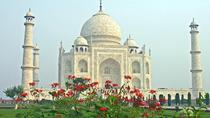 6 Day Golden Heritage Tour of North India, New Delhi, Multi-day Rail Tours