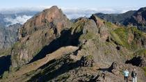 Highest Mountains of Madeira Private Tour, Funchal, Half-day Tours