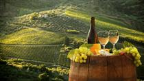 Private Tour: Arrábida Wine and Landscape Tour with tastings, Lisbon, Wine Tasting & Winery ...