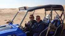Dune Buggy Desert Adventure Tour from Abu Dhabi, Abu Dhabi, 4WD, ATV & Off-Road Tours