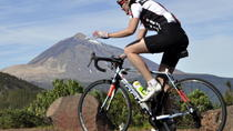 South of Mt Teide Bicycle Tour in Tenerife, Tenerife, Bike & Mountain Bike Tours