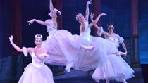 Evening Shore Excursion: St Petersburg Private Theater Tour and Russian Classical Ballet Evening ...