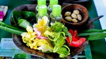Traditional Bali Medicine Half-Day Tour Including Jamu Class, Bali, Cultural Tours