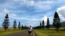 Lanai Full Day Bike Tour And Ferry With Lunch, Maui, Bike & Mountain Bike Tours