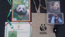 One-Day Dujiangyan Panda Volunteer and Panda Holding Experience From Chengdu, Chengdu, Nature & ...