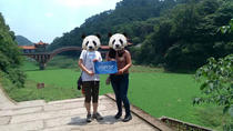 Private Chengdu Giant Panda Base and Leshan Giant Buddha Trip by High-Speed Train, Chengdu, Private ...