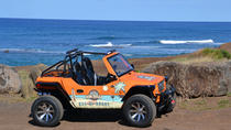 North Shore Dune Buggy Off-Road Tour, Oahu, 4WD, ATV & Off-Road Tours