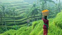 Private Half-Day Ubud Art and Culture Tour, Ubud, City Tours